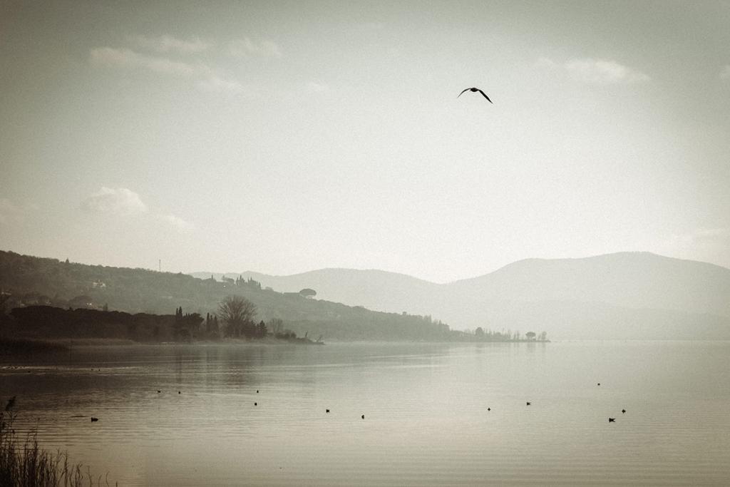 Fotografie del lago Trasimeno