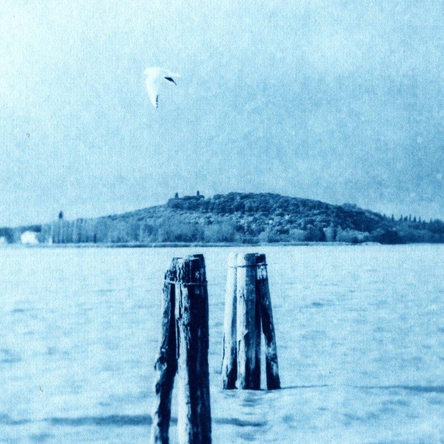 Isola e Gabbiano Detail